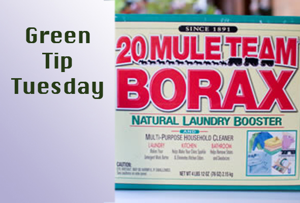 gtborax Green Tip Tuesday   Household Cleaner