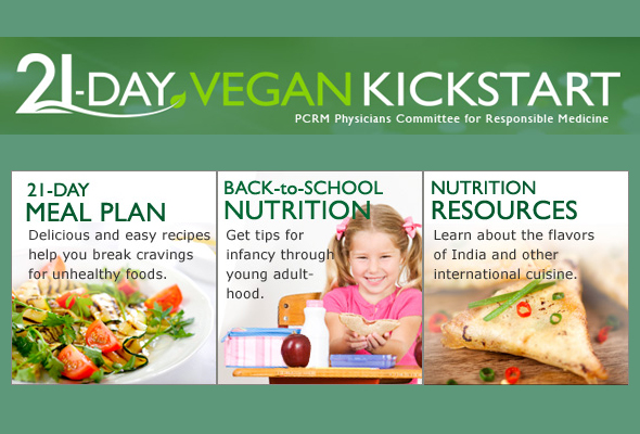 21 Vegan Kickstart Diet - courseinter