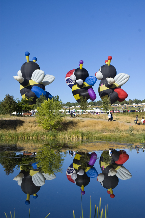 ballbees The Great Reno Balloon Race