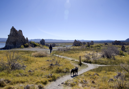 Hiking trail near Mono Lake