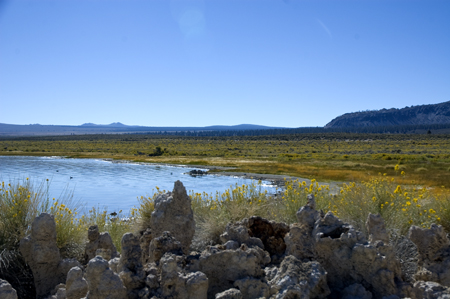 tufaim13 Visiting the Tufas at Mono Lake