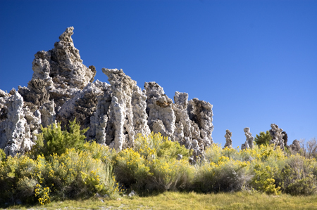 tufaim4 Visiting the Tufas at Mono Lake