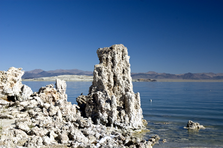 tufaim9 Visiting the Tufas at Mono Lake