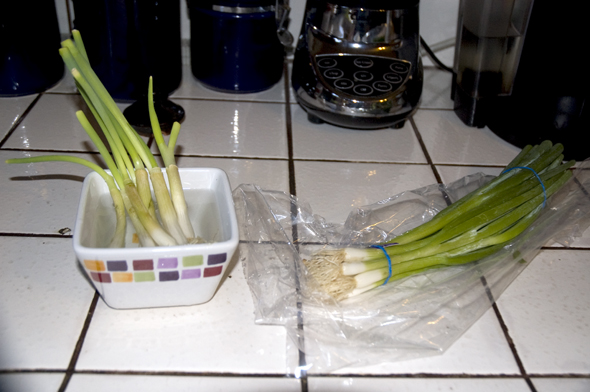 precut Green Onion Trick