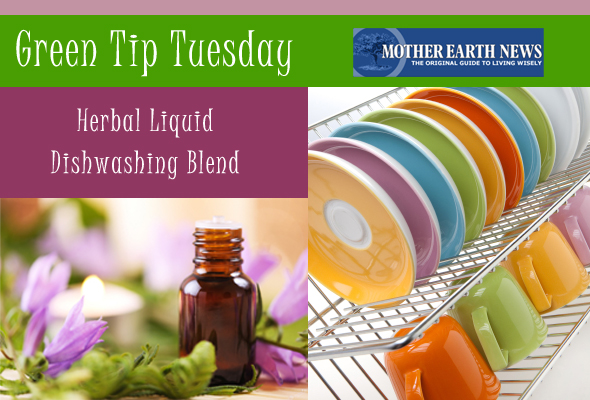 gttuesdish Green Tip Tuesday   Liquid Dishsoap