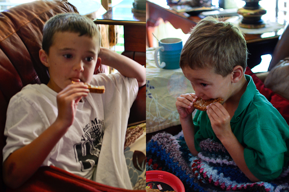 biscboys Biscoff Spread   Yummy & Vegan?!