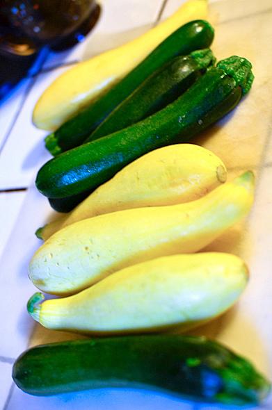 squash and zucchini