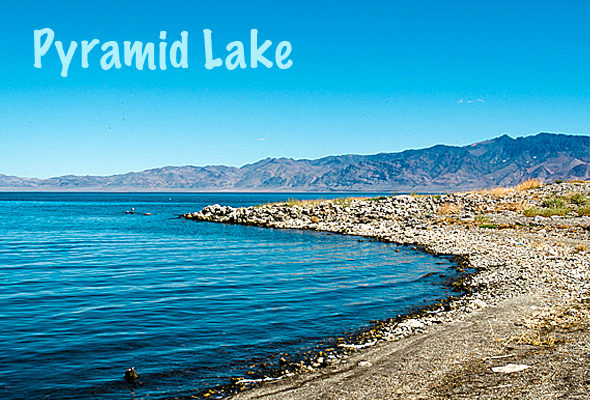 pyrlkemain Wordless Wednesday   Pyramid Lake