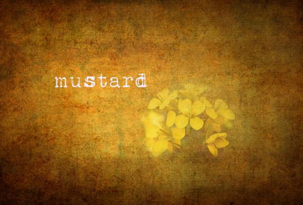 mustardmain
